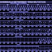 DNA Mutation - Single by Shambala Networks