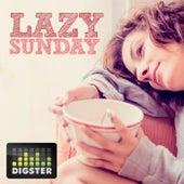 Digster Lazy Sunday van Various Artists