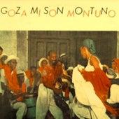 Goza Mi Son Montuno von Various Artists
