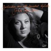 Balladen om ett brustet hjärta de Sarah Dawn Finer