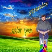 Solar Plea (feat. Bob Keislar) by Street Dogs