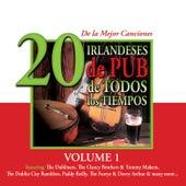 20 de la Mejor CancionesIrlandeses de Pub de Todos los Tiempos, Vol. 1 by Various Artists