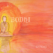 Sentience by Bodhi
