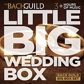 Little Big Wedding Box by Various Artists