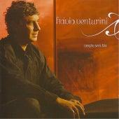 Canção Sem Fim de Flavio Venturini