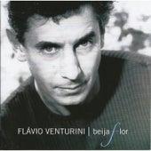 Beija Flor de Flavio Venturini