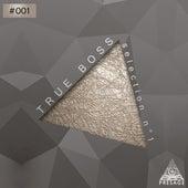 True Boss Selection No. 1 de Various Artists