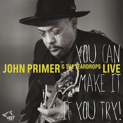 You Can Make It If You Try by John Primer