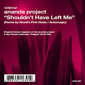 Shouldn't Have Left Me by Ananda Project