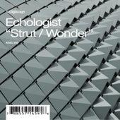 Strut / Wonder de Echologist