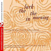 Lark In The Morning by Various Artists