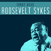 Sunny Road de Roosevelt Sykes