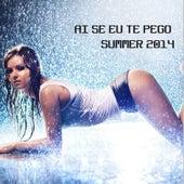 Ai Se Eu Te Pego Summer 2014 de Various Artists