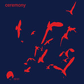 Birds by Ceremony