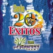 Serie 20 Exitos de Banda Maguey