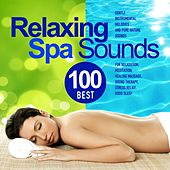 Best 100 Relaxing Spa Sounds (Gentle Instrumental Melodies and Pure Nature Sounds for Relaxation, Meditation, Healing Massage, Sound Therapy, Stress Relief, Good Sleep) by Various Artists
