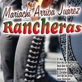 Mariachi Arriba Juárez - Rancheras de Mariachi Arriba Juárez