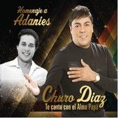 Homenaje a Adanies - Te Canto Con el Alma Papa de Churo Diaz