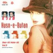 Husn-E-Butan by Sher Ali