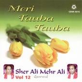 Meri Tauba Tauba by Sher Ali