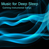 Music for Deep Sleep: Calming Instrumental Songs by The O'Neill Brothers Group