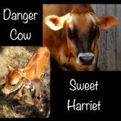 Danger Cow by Sweet Harriet