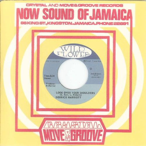 Look Over Your Shoulders / Dancing The Reggae by Derrick Harriott