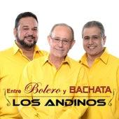 Entre Bolero y Bachata de Las Andinos