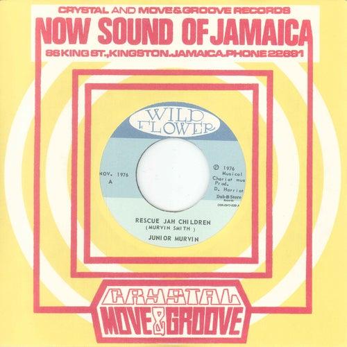 Rescue Jah Children / Instrumental Dub Version by Junior Murvin