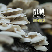 Now, Forager (Original Motion Picture Soundtrack) by Chris Brokaw