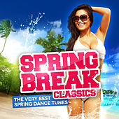 Spring Break Classics (The Very Best Spring Dance Tunes) von Various Artists