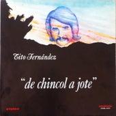 De Chincol a Jote de Tito Fernández