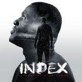 Itinéraire d'un damné de Index