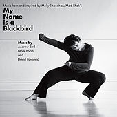 Music from and inspired by My Name is a Blackbird von Various Artists