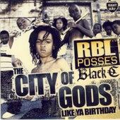 Like Ya Birthday Single von R.B.L. Posse