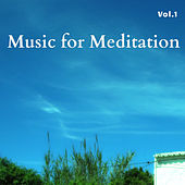 Music for Meditation Vol.1 de Various Artists