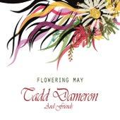 Flowering May de Various Artists