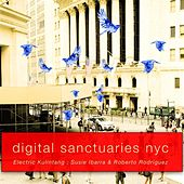 Digital Sanctuaries, New York City, Vol. 1 de Electric Kulintang