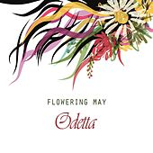 Flowering May by Odetta