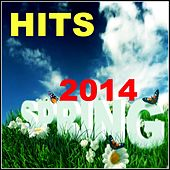 Spring Hits 2014 by Various Artists