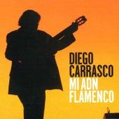 Mi ADN Flamenco by Diego Carrasco