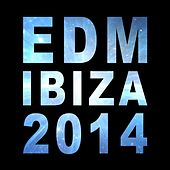 EDM Ibiza 2014 - EP by Various Artists