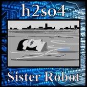 Sister Robot de H2SO4