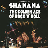 The Golden Age of Rock 'n' Roll de Sha Na Na