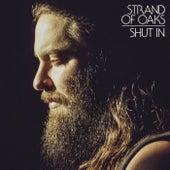 Shut In by Strand Of Oaks