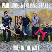 Hole in the Wall by Paul Lamb & King Snakes
