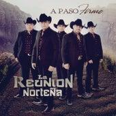 A Paso Firme by La Reunion Norteña