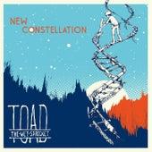 New Constellation von Toad the Wet Sprocket