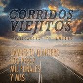 Corridos Viejitos, Traficantes y Amores: Lamberto Quintero, Los Perez, Mil Punales y Mas de Various Artists