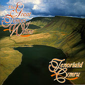 Tenoriaid Cymru / The Great Tenors Of Wales by Various Artists